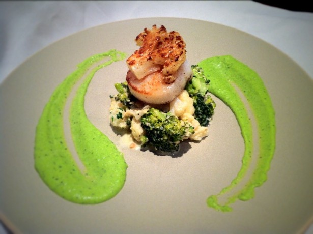 Scallop with broccoli and cauliflower risotto